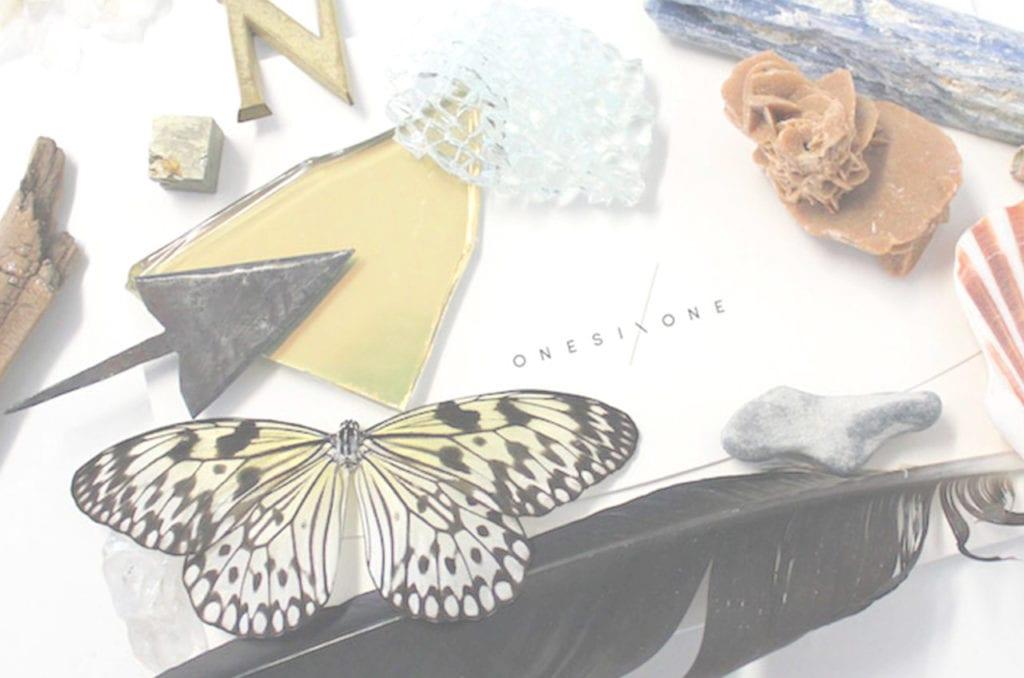 Mariposa sobre mesa