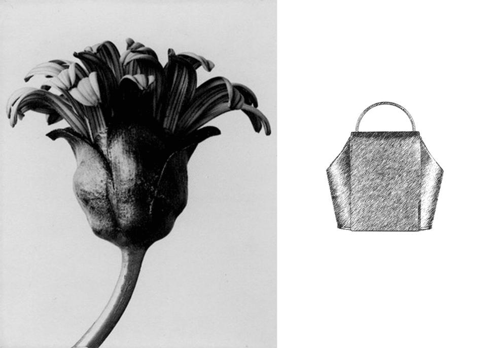 Flor y bolso